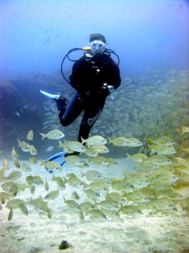 for scuba diving in Maspalomas, a short ride will take you to some excellent diving in the Arinaga marine Reserve