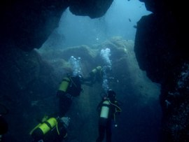 diving gran canaria through the Arinaga Arch