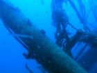 A barracuda hunts around one of the masts of the wreck of the Frigorifica in Gran Canaria