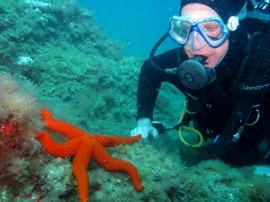 diver with starfish in Gran Canaria