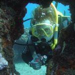 diver explores underwater scuba diving in Canary Islands
