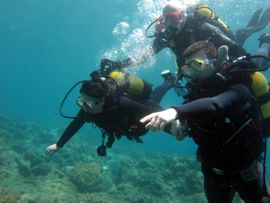keeping you safe as we discover diving in Gran Canaria