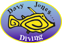 Davy Jones Diving centre Arinaga