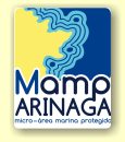 Micro area marine protected in Arinaga for diver