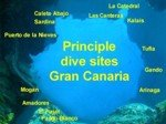 Best dive sites in gran canaria