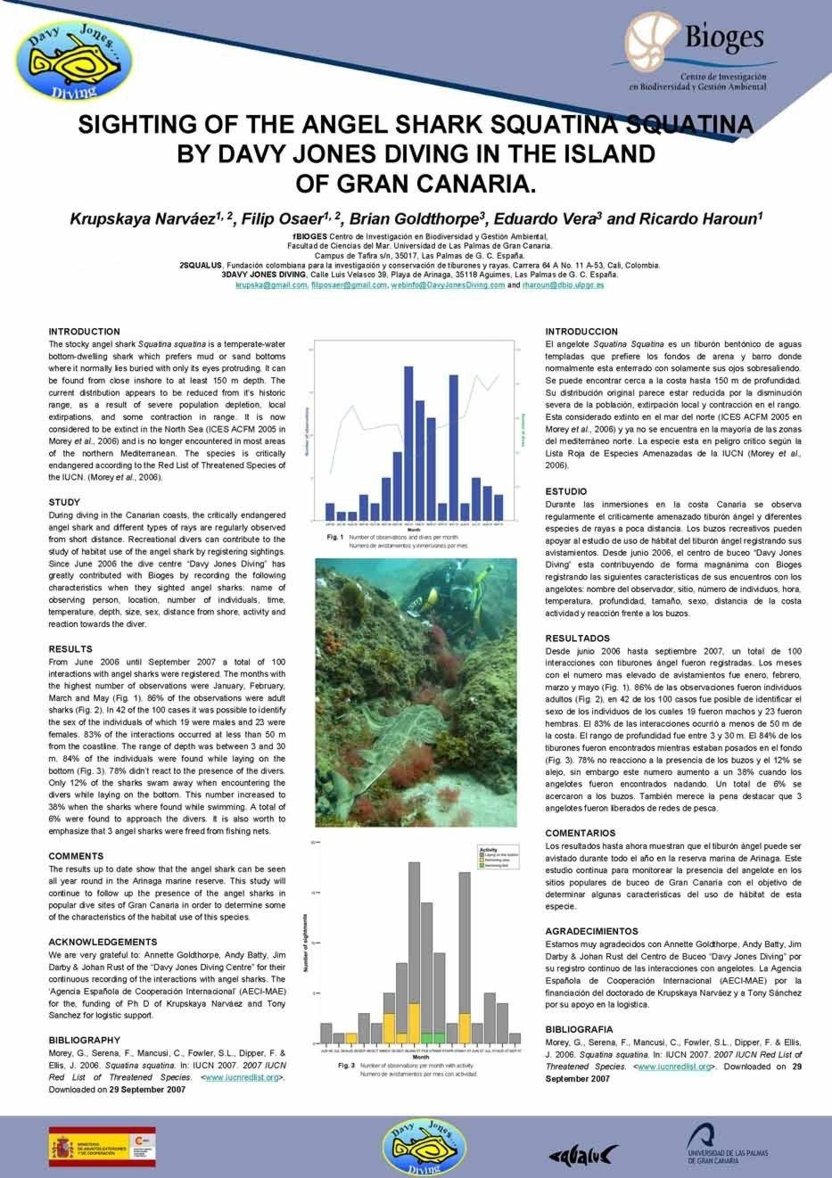 Sharks and Diving Gran Canaria - Article on Angelshark Sightings ...