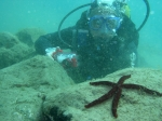 Dive gran canaria - conditions below normal