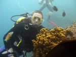 Dive gran canaria - normal conditions