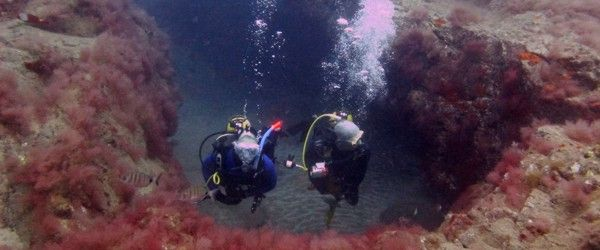 PADI Open Water Course Gran Canaria