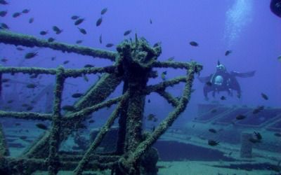 Davy Jones Diving are Padi Gran Canaria's Gold Palm Resort no 798745