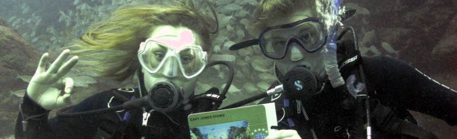 Canary islands get your PADI qualification